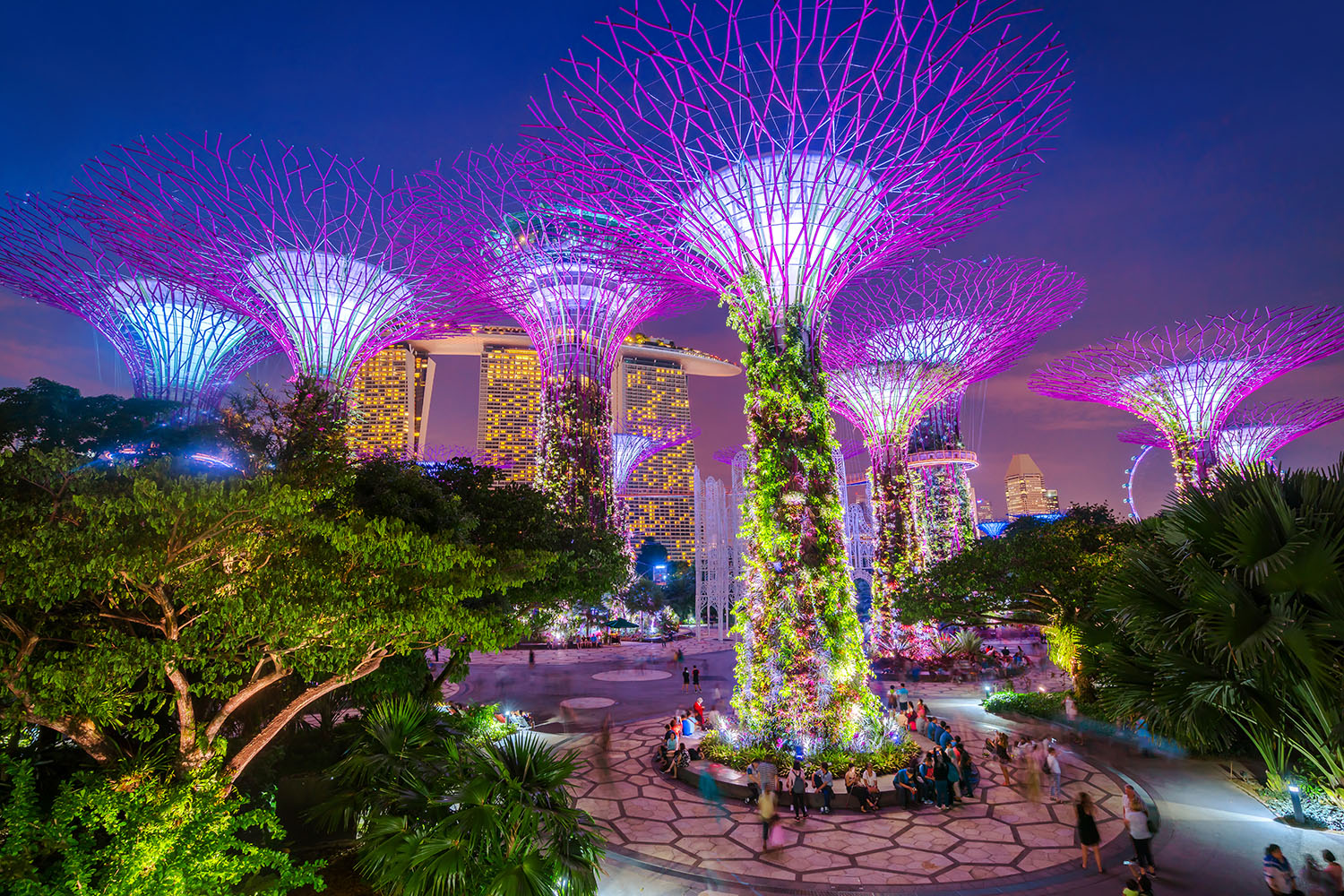 Gardens by the Bay Tour on SIC – Everest Holiday Bangladesh